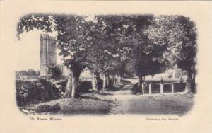Manaton , Devon , England , 00-10s : The Avenue