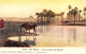 Le Caire Egypt, Egypte, Africa Les environs de Ghizeh Le Caire Les environs d...