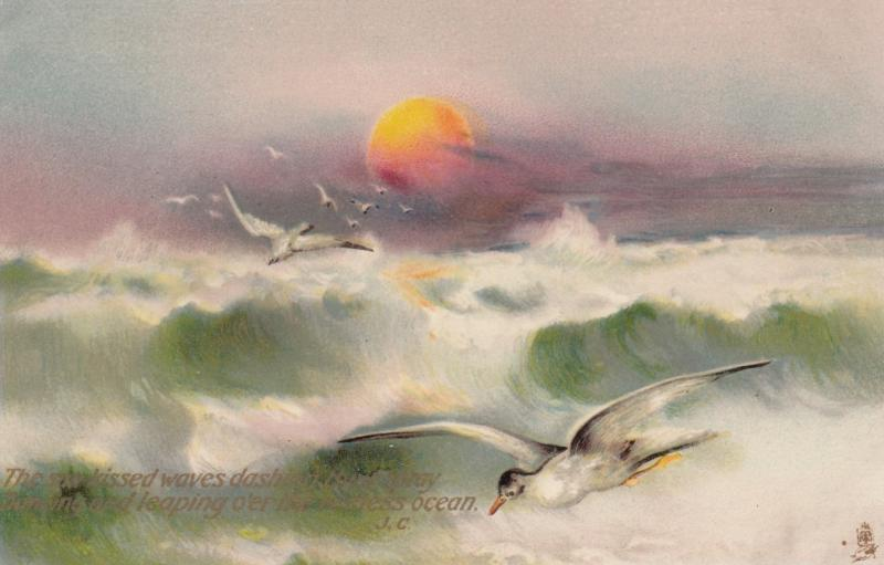 Seagulls , What are the Wild Waves Saying? , 1910 ; TUCK 2850