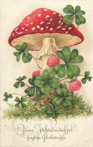 Red mushroom fantasy luck shamrocks greetings postcard