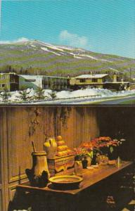 Vermont Mount Snow Anddirons Motor Lodge Dover Forge