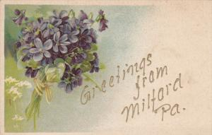 Bouquet of Violets, Greetings from MILFORD, Pennsylvania, 00-10s