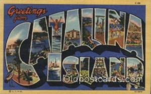 Catalina Island, USA Large Letter Towns Postcard Postcards  Catalina Island, USA