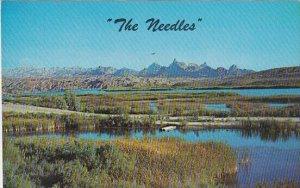 The Needles California