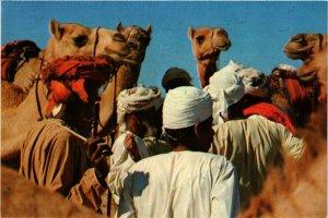 PC CPA SAUDI ARABIA, THE CAMEL MARKET, Modern Postcard (B3792)