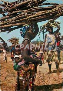 Postcard Modern Africa Colors Bearers Fagots
