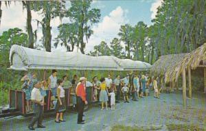 Florida Weeki Wachee Covered Wagon Train