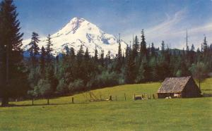 Pretty Mt. Hood, Oregon/OR Postcard, As Seen From The East