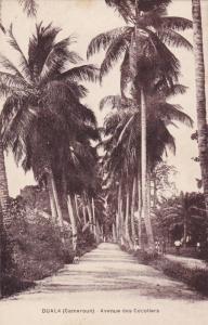 Avenue Des Cocotlers, Duala, Douala, Cameroon, Africa, 1900-1910s