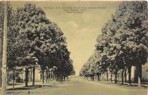 Big Rapids Michigan~Michigan Avenue North @ Locust~Photo by Crane~1920 Postcard