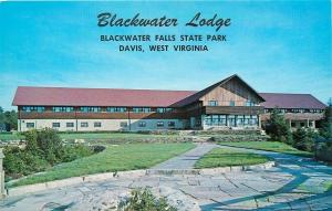 Davis West Virginia~Blackwater Lodge~Blackwater Falls State Park~1960s Postcard