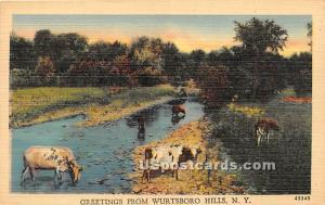Greetings From Wurtsboro Hills NY Unused