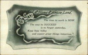 Social History WCTU Temperance Alcohol Prohibition Quote c1910 Postcard #2
