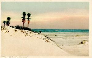 FL - Sandy Coastline