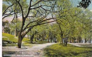 Indiana Indianapolis Scene In Fairview Park
