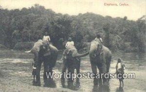 Elephants Ceylon, Sri Lanka Unused