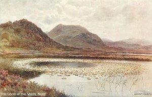 Scottish Lochs Postcard Loch of the White  Fairy