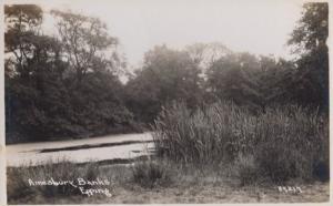 Amesbury Banks Epping Real Photo Postcard