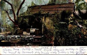 California Los Angeles Old Cabin At Baldwin's Ranch 1906