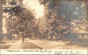 Westerville Ohio~College Avenue Homes~Tree Lined Street~1906 Real Photo~RPPC