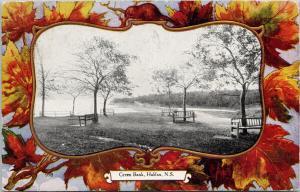 Green Bank Halifax NS Nova Scotia Maple Leaf c1906 Postcard D86