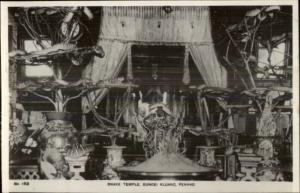 Penang Malaysia Snake Temple Subgei Kluang Real Photo Card/Postcard #2