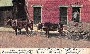 LP85 Ox Team Lynchburg publisher  Virginia Postcard Black History Americana