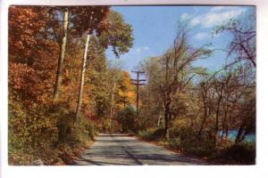 Autumn Road Scene, Colourpicture Publishers, Boston