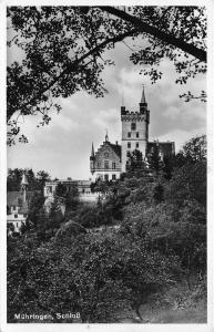 B67704 Germany Muhlingen Castle