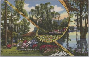 Wilmington, N. C., Scenes from Greenfield Lake and Park -