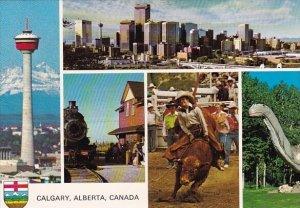 Canada Western Canadas Fastest Growing City Offers The Culture Calgary Alberta