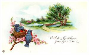 9208   Birthday Nesting  Birds