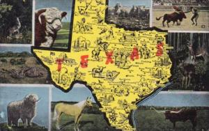 Map Of Texas With Multi Views