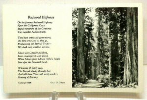 RPPC-Redwood Highway--California Coast 1936 EKC Real Photo Postcard A3