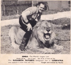 Elizabeth Taylor Cleopatra Guiness Book Of Records Lion Rare Press Movie Photo