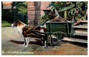 Dog ,    Collie  pulling dogcarts