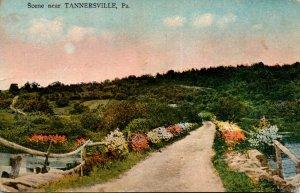 Pennsylvania Scene Near Tannersville 1917