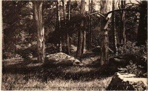 CPA Ermenonville- Parc de Valliere, Roches de Gres FRANCE (1020484)