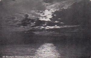 New York Chautauqua Lake Moonlight Scene