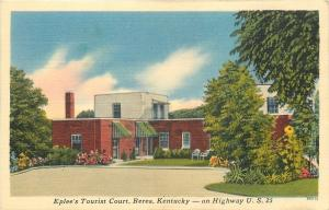 Berea KY~Eplee's Tourist Court~Pinstriped Awnings 1940s Postcard