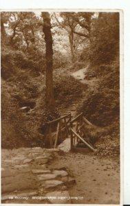 Sussex Postcard - Ecclesbourne Glen - Hastings - Ref TZ959