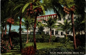 MIAMI , FLORIDA - ROYAL PALMS GROUNDS - FL - VINTAGE - POSTCARD