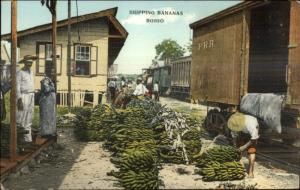 Panama - RR Train Car Shipping Bananas - Bohio c1910 Postcard