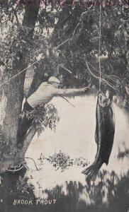 Fantasy Fisherman , Brook Trout , 1911