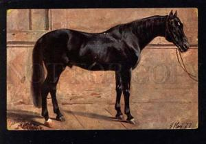 031958 Black HORSE in Stable. By KOCH G. Vintage PC