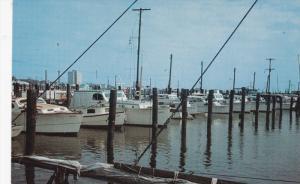 Yacht Basin , CHARLESTON , South Carolina , 50-60s