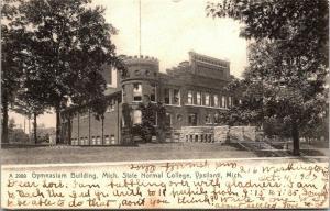 Ypsilanti Michigan State Normal College~Teacher Bubbles Over Over 11 Pupils 1906