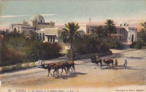 Algeria Oasis de Biskra Le Casino et le Palce Hotel
