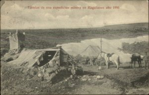 Magallanes Chile Minerals Mining Camp Miner Horse 1906 Used Postcard