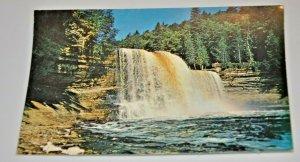 Michigan Upper Peninsula Upper Falls Tahquamenon River Hiawatha MCM Mid Century